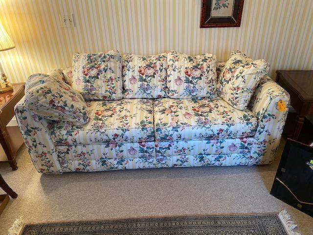 sleeper-sofa-with-down-pillows
