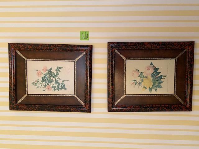 3-philippine-botanical-paintings