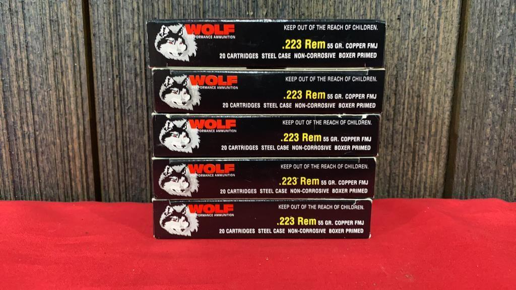 100-rounds-223-wolf-ammo