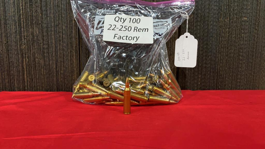 100-rounds-22-250-ammo