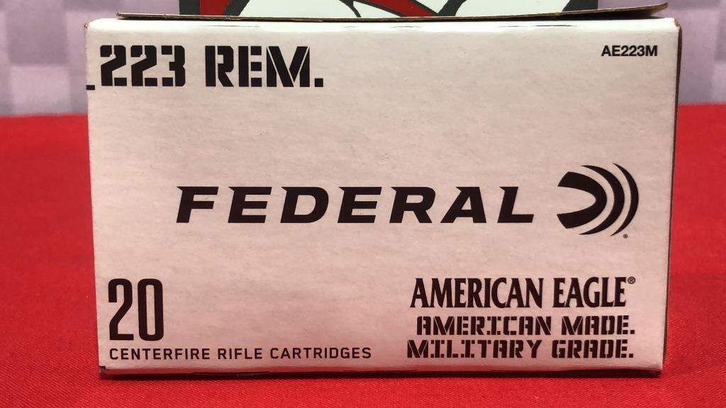 20rds-federal-223-ammo