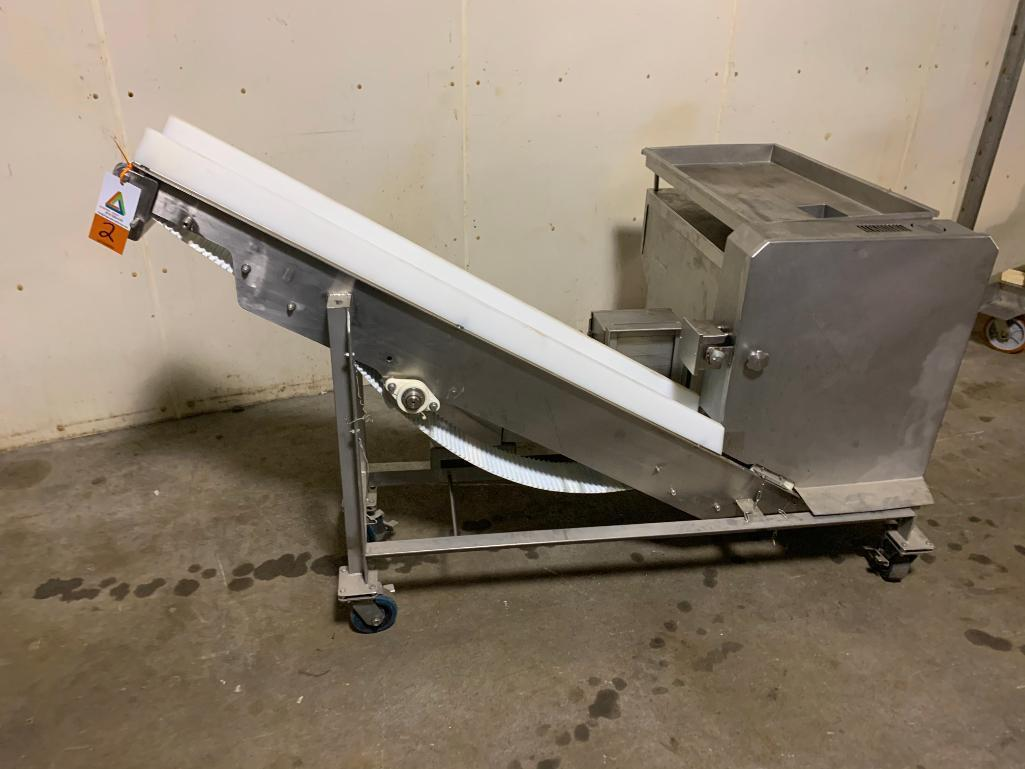 foodlogistik-dicer-model-ms100
