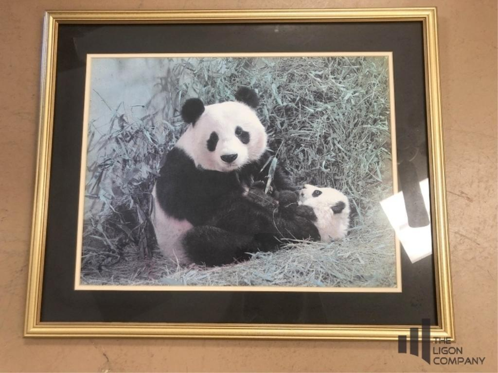 panda-and-cub-framed-print