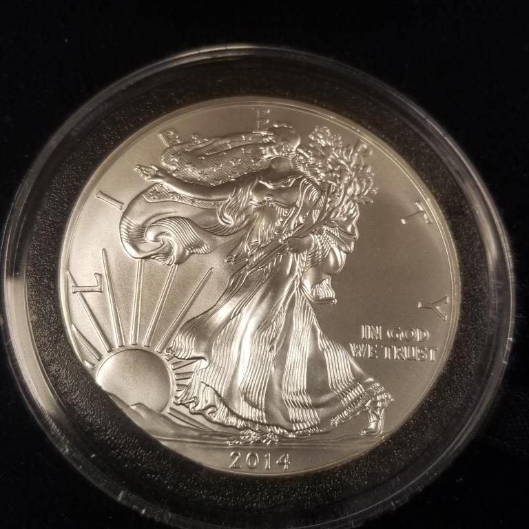 2014-silver-eagle